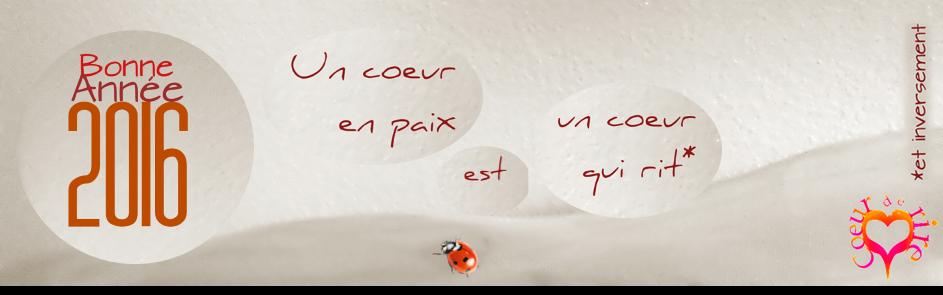 Carte Voeur 2015 Coeur de Rire. Droits r�serv�s TOTAL